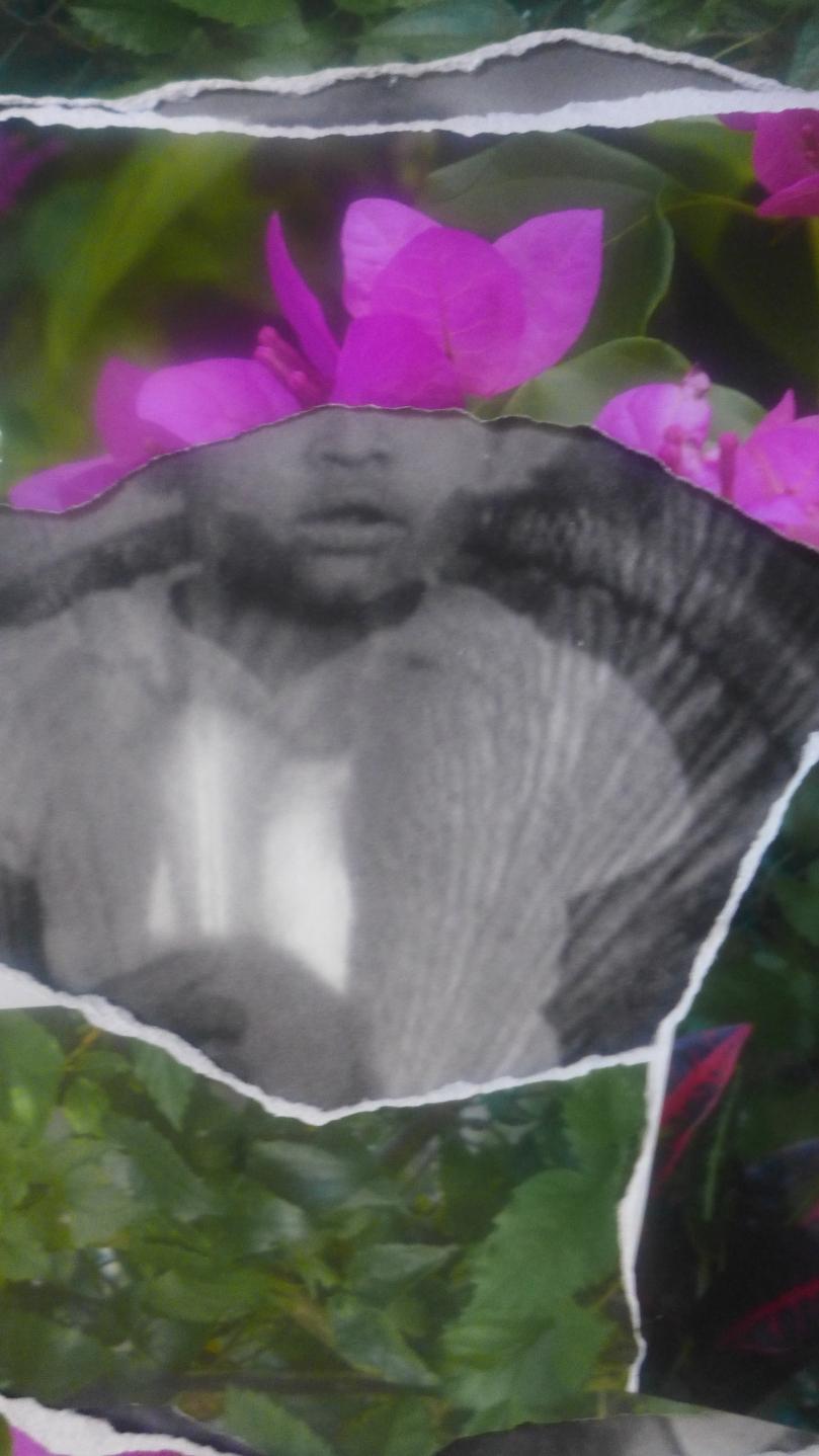 jacqueline-bishop-tristes-tropiques-1-2014-20x11-digital-photographic-collage