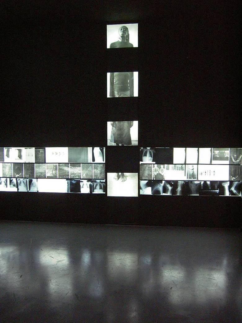 petrona morrison - realityrepresentation 2004